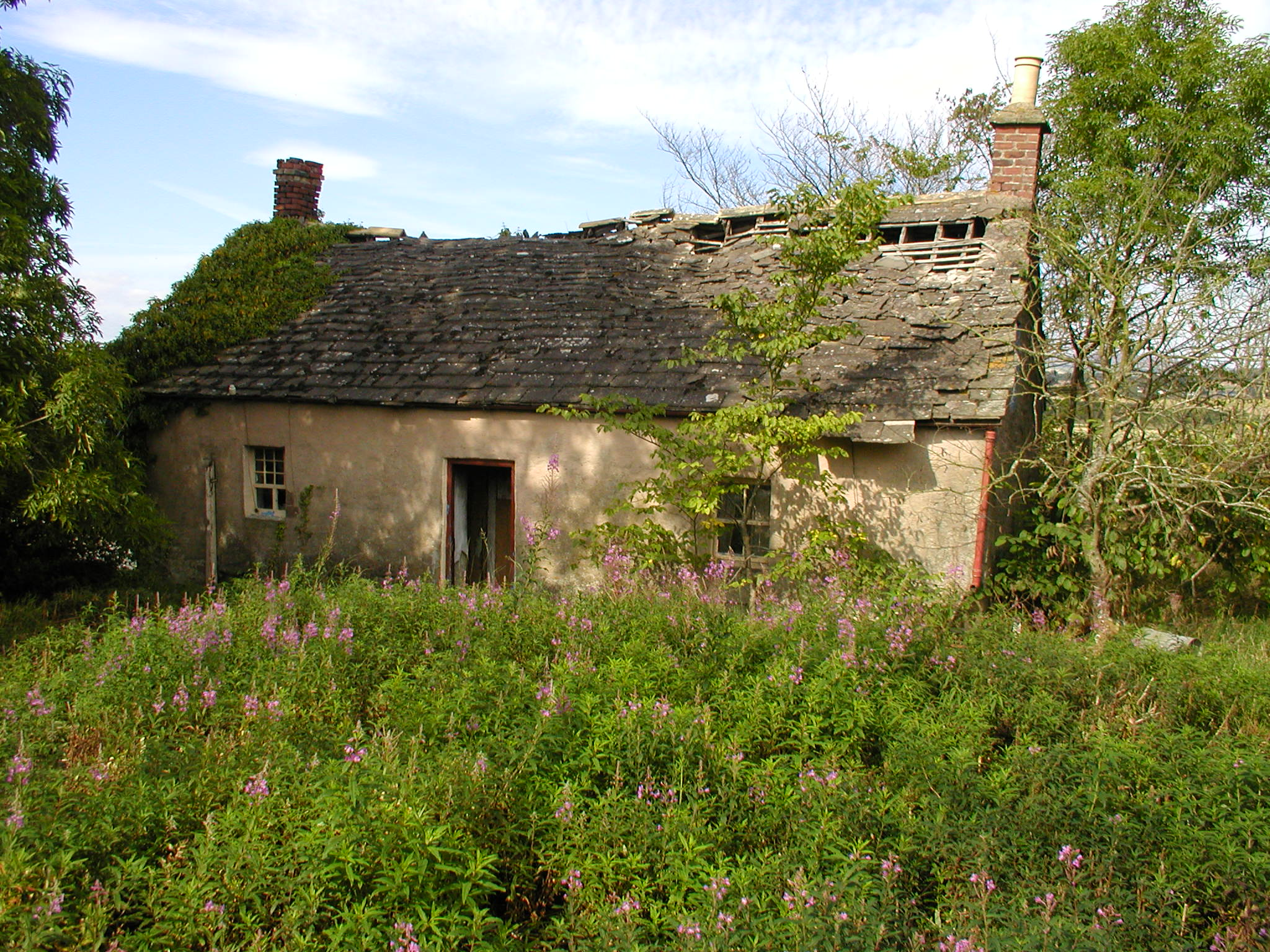 Netherton cottage for The cottage house