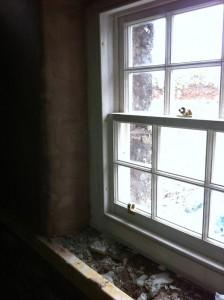 Sash & case windows